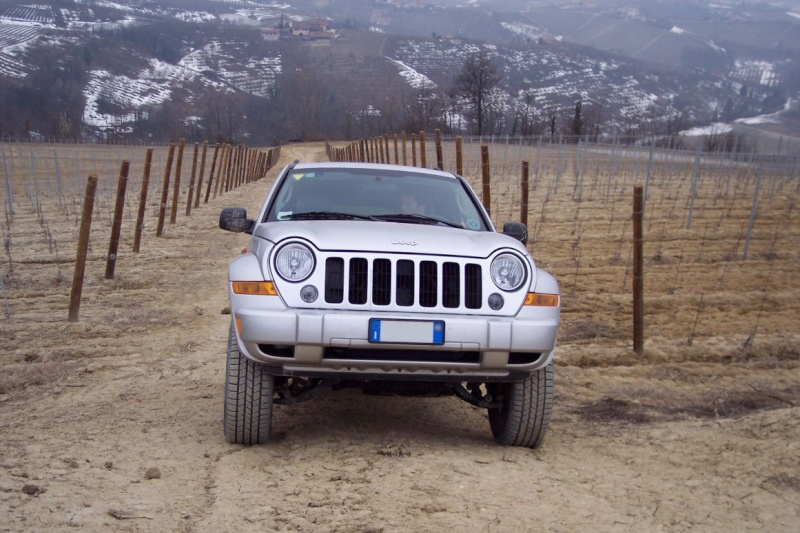 La mia bestiolina Jeep_a28