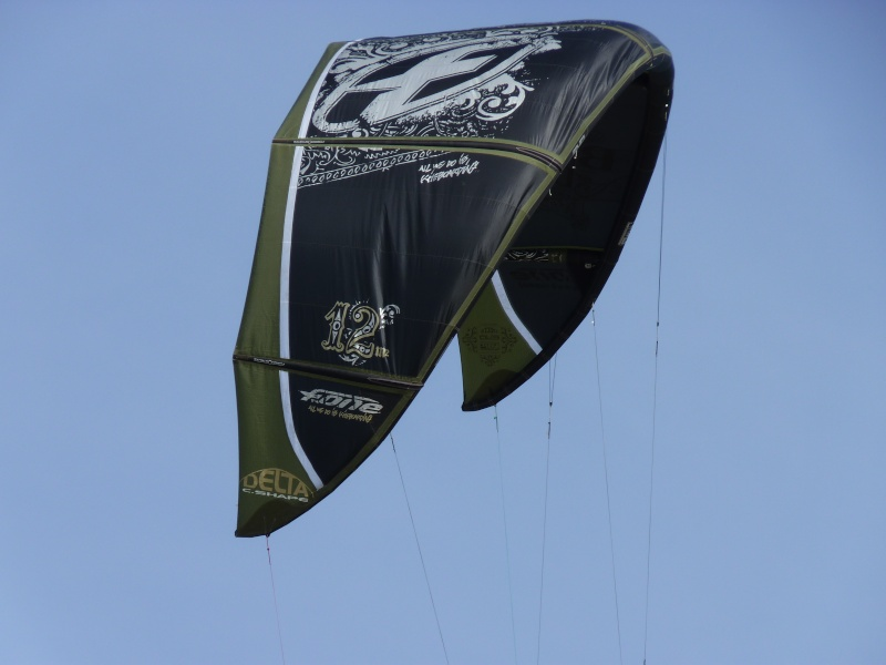 Voile du kate-surf ou fly-surf P1000313