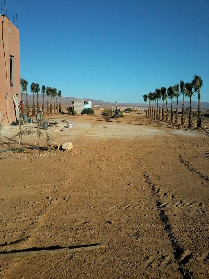[Maroc Camp/Dernières nouvelles]  BOUIZAKARNE : Camping Tinnoubga   - Page 3 Image15