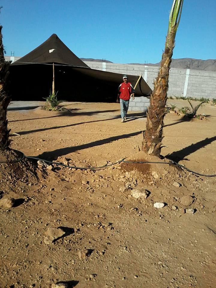 [Maroc Camp/Dernières nouvelles]  BOUIZAKARNE : Camping Tinnoubga   - Page 3 Image16