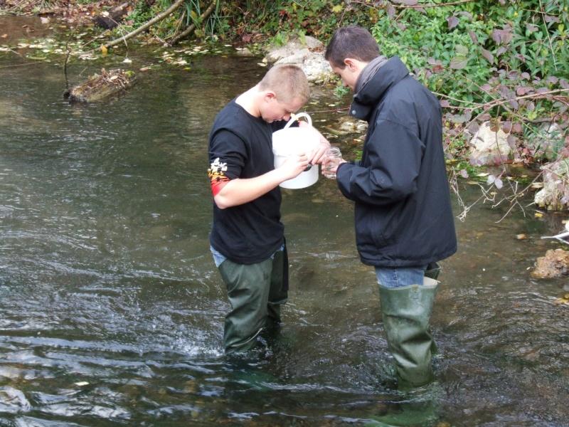 Prélèvements en rivière Dscf1810