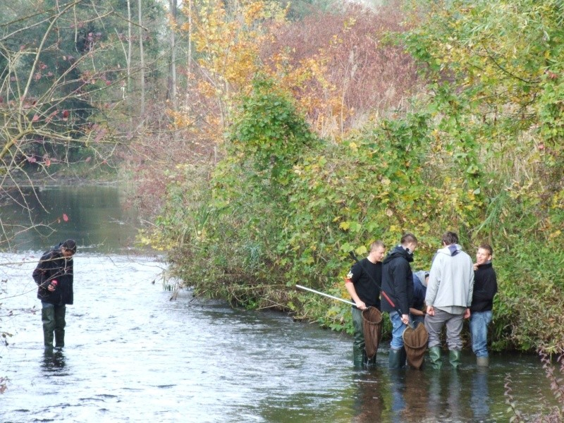 Prélèvements en rivière Dscf1812