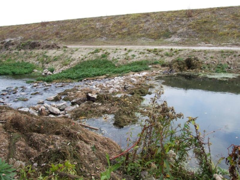 Réhabilitation de rivière Dscf1814