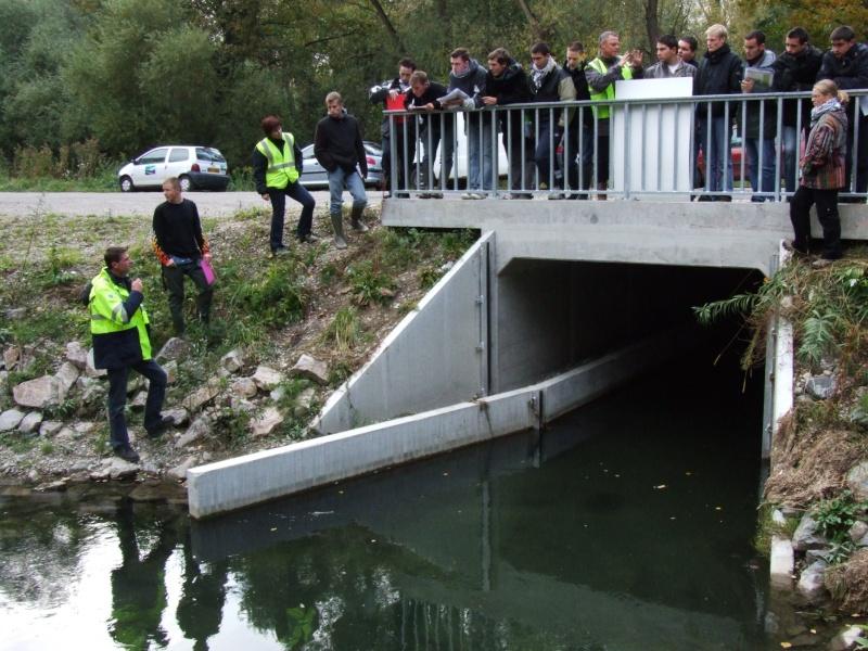 Réhabilitation de rivière Dscf1815