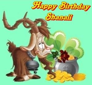 Happy Birthday Schanaii Cats14