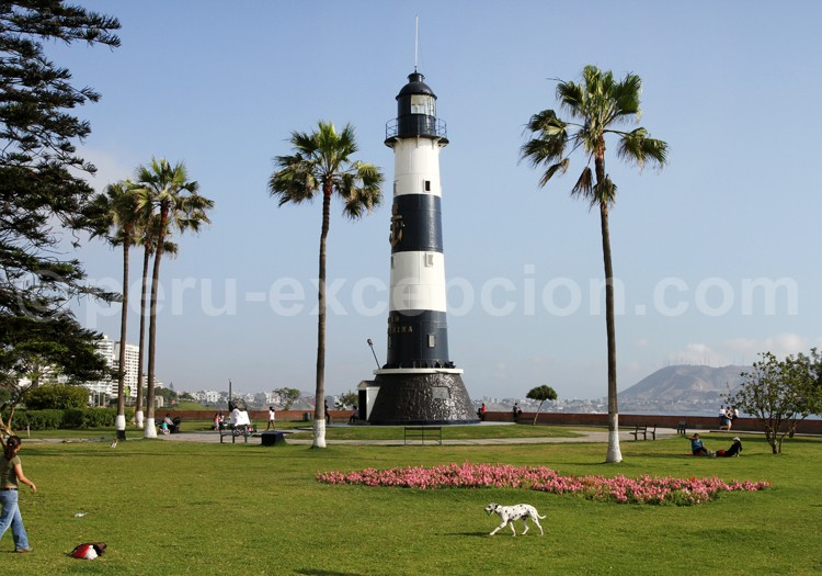 Un phare - ajonc- 16 novembre trouvé par Martine Faro-l11