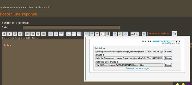 Comment insérer des images dans les messages Insert12