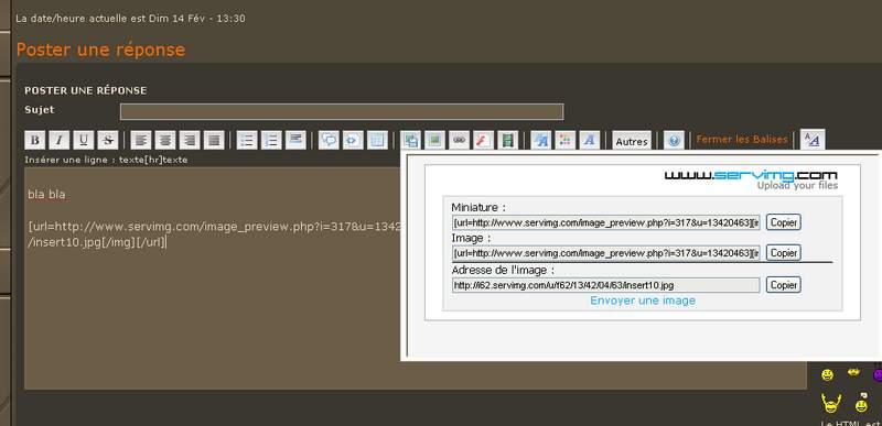 Comment insérer des images dans les messages Insert13