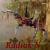 Le Blog de Radiak-N