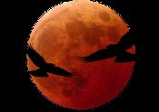 Synilis, de la Lune Rouge Lr_log10