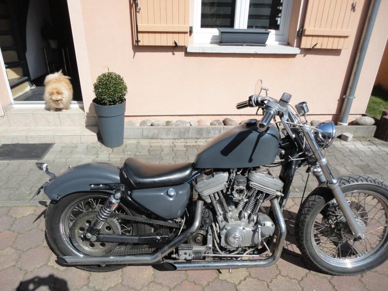 Harley 883 boite 4. Dsc04810