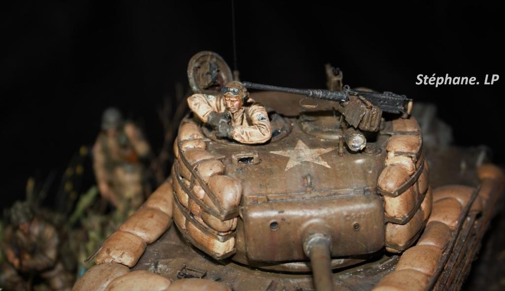 Une rencontre inattendue... Sherman M4A3 - Tamiya - 1/35 Img_1512
