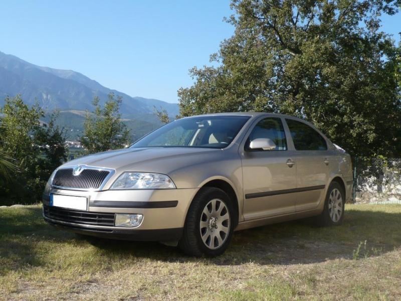 [VENDU] [94] Skoda Octavia confort pack gps P1040410