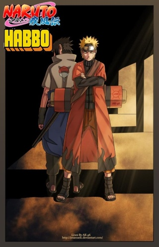 Rol Naruto Evolution
