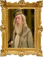 Vice-Diretor de Hogwarts / Professor de Transfiguração