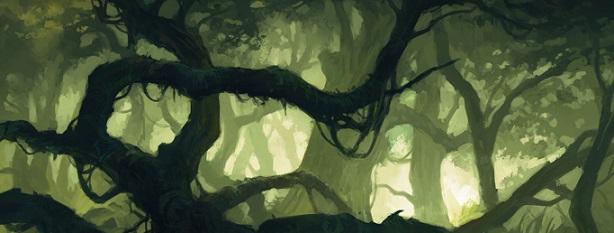 La Forêt sombre Forets10