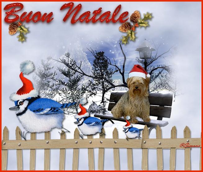 immagini Natale 2011-12-13-14-15 Devils10