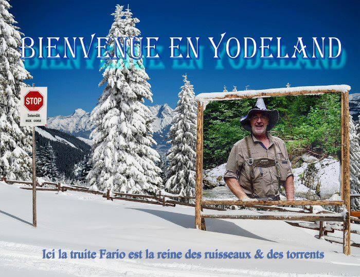 yodeland  10574210