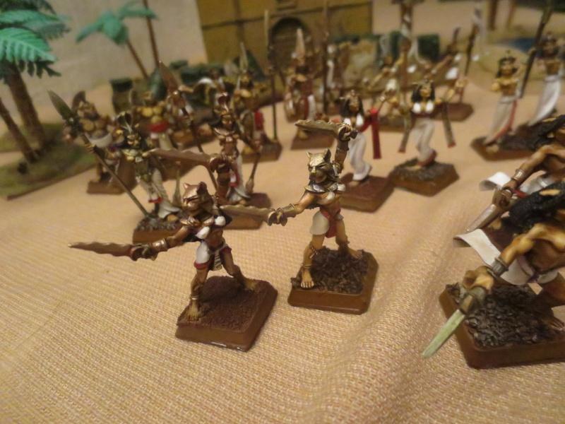 Liste d'armée de Lord Chaboulet Img_1619