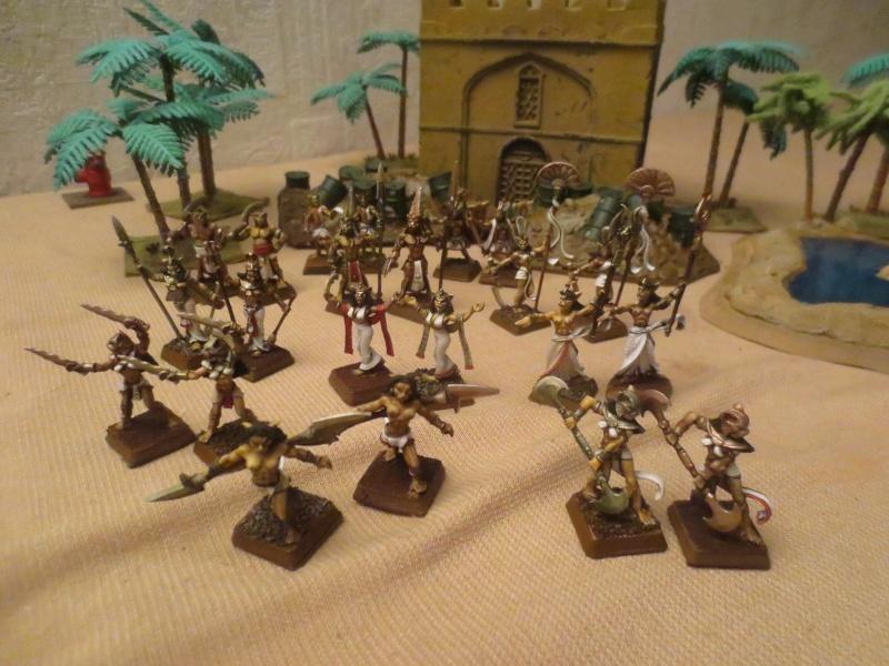Liste d'armée de Lord Chaboulet Img_1621