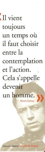 Folio éditions Numar261