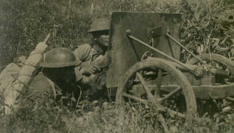 Le canon de 37 mm Rosenberg mle 1915 16509910