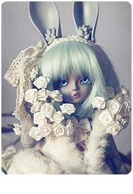 16/09 {Ɑust of Dolls Appi Lünn Chocolat}✩ Cleia ✩ début p.19 Spinel10