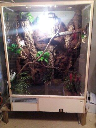 terrarium de mon dragon d'eau  14465710