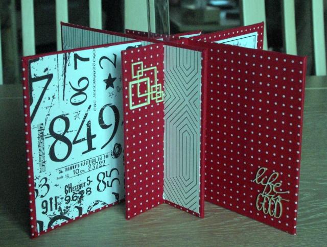 30 novembre : un soliflore cartonné... Imgp8313