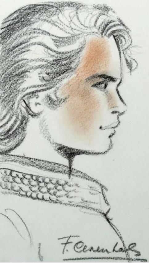 Chevalier Ardent - Page 9 Craenh13