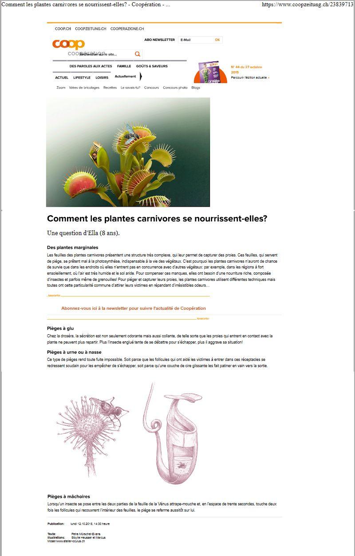 COOP - Comment les plantes carnivores .......... Plante10