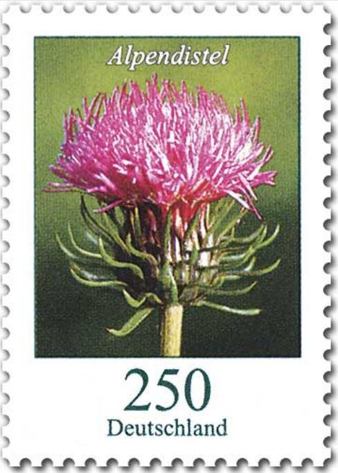 Blumengruß aus Deutschland - Seite 2 05_blu10