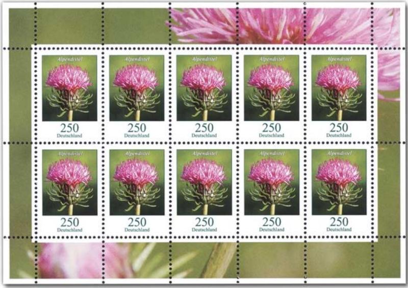 Blumengruß aus Deutschland - Seite 2 05_blu11