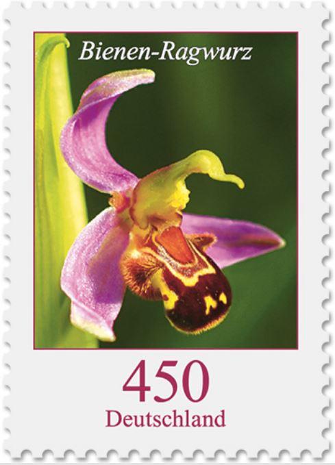 Blumengruß aus Deutschland - Seite 2 Bienen10