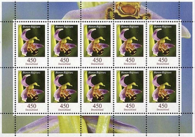 Blumengruß aus Deutschland - Seite 2 Bienen11
