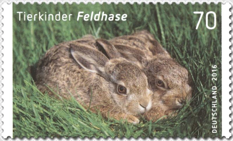Ausgaben 2016 - Deutschland Feldha10
