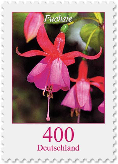 Blumengruß aus Deutschland - Seite 2 Fuchsi10