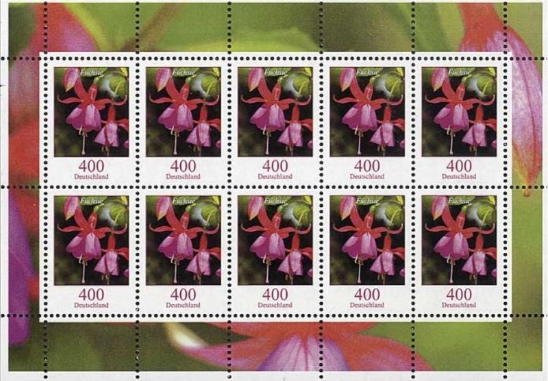 Blumengruß aus Deutschland - Seite 2 Fuchsi11