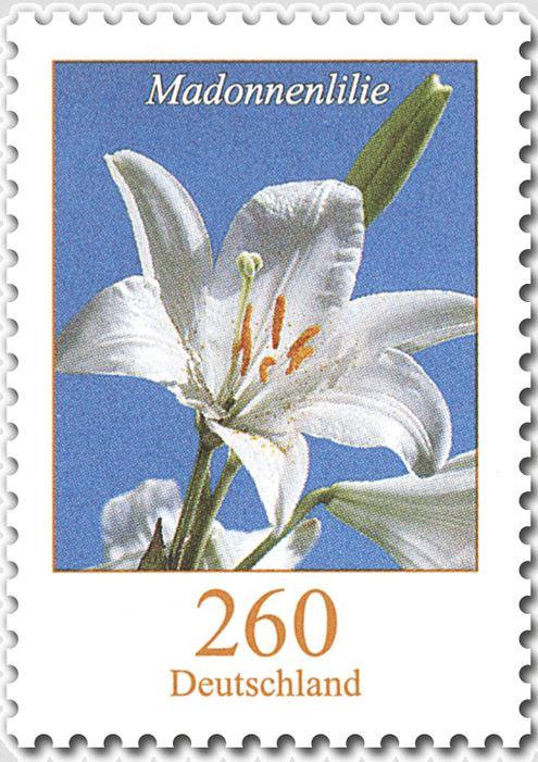 Blumengruß aus Deutschland - Seite 2 Lilie_10