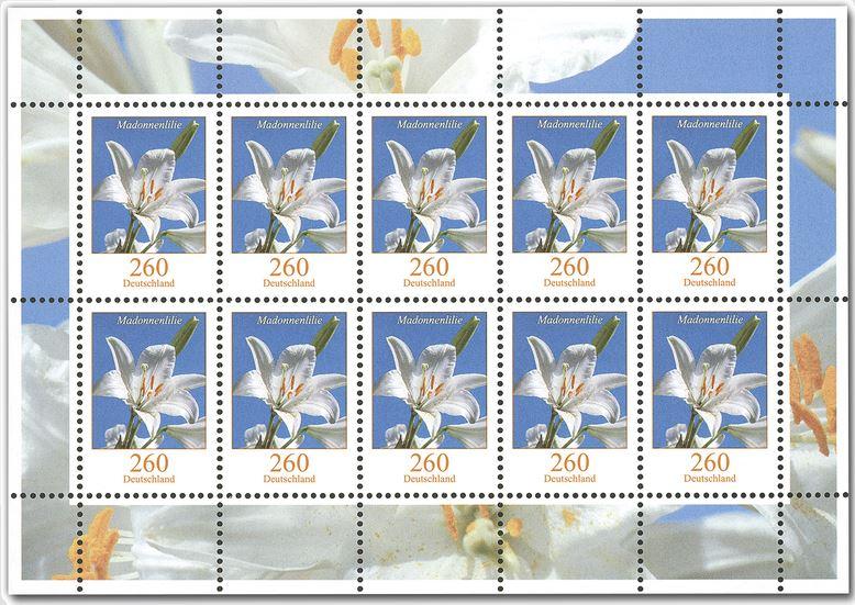 Blumengruß aus Deutschland - Seite 2 Lilie_11