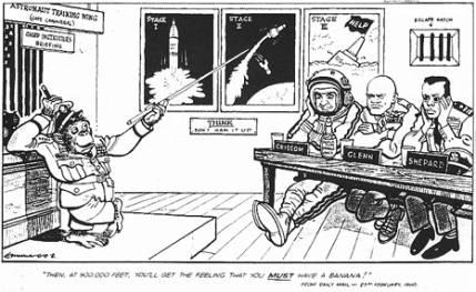 les animaux spatiaux - Page 2 Image010