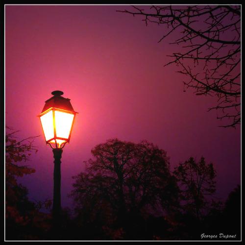 Entre deux lanternes 16457710