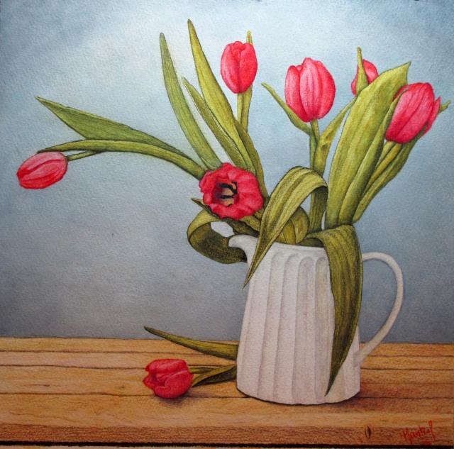Tulipes en pot Tulipe10