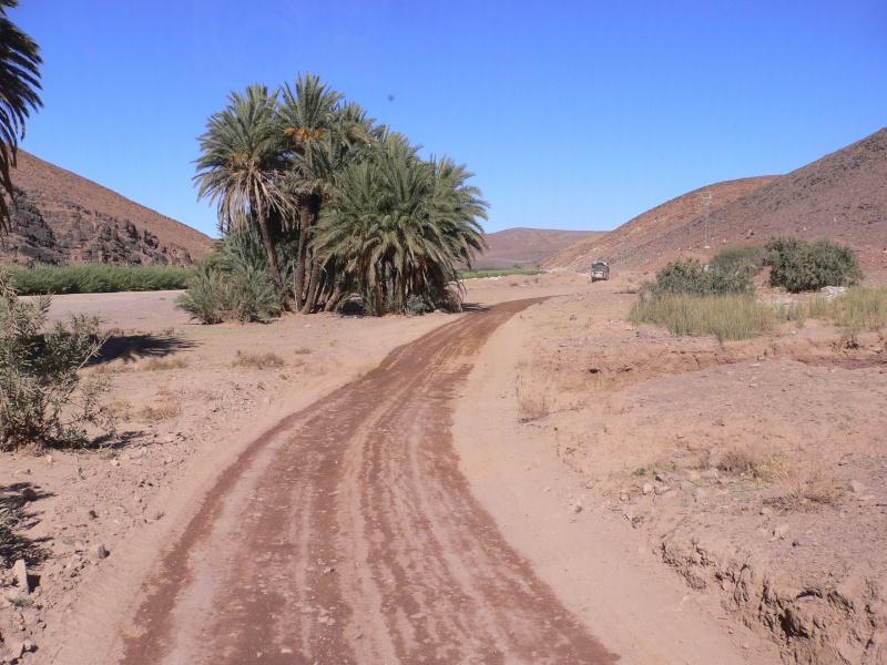 Des Mog. au Maroc. 14010