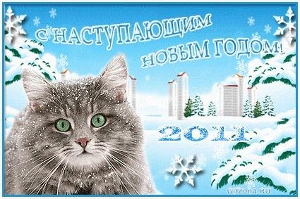С Наступающим 2011 годом кота и кролика и Рождеством!!! 2011_011