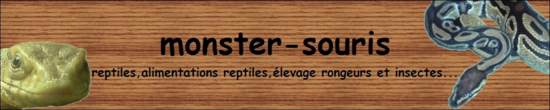 Disponibilitées sur www.monster-souris.com 36325312