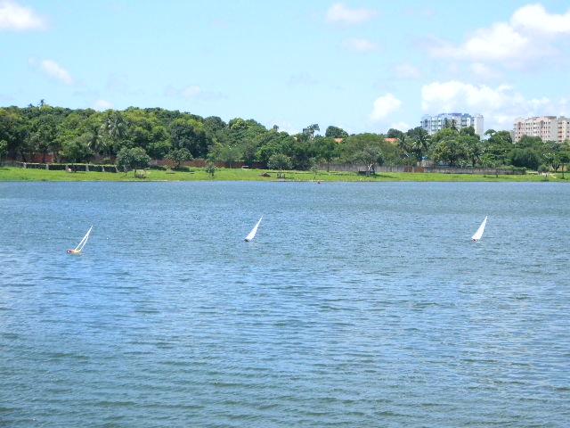 Lagoa da Parangaba - Domingo 03/04/2011 Imagem26