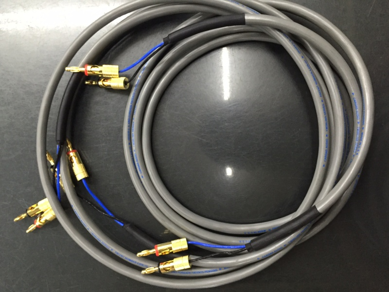 Cardas Twinlink Speaker Cable C210