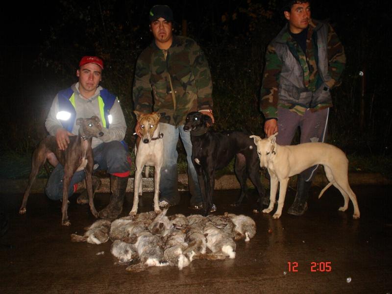 TEMPORADA DE CAZA NUEVA IMPERIAL 2010 Dsc00024