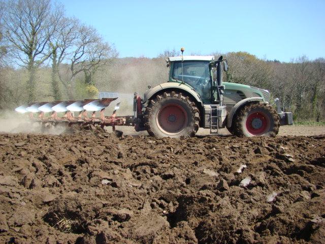 Semis de maïs 2010 Prigen25